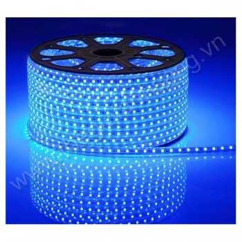 Led cuộn 100m 5050 màu xanh dương HP9-5050